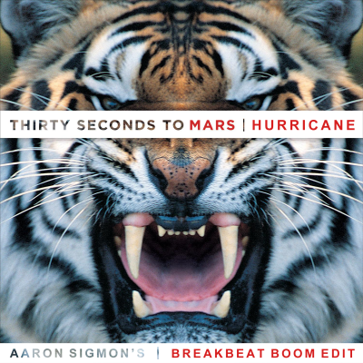 30 Seconds To Mars - Hurricane (Aaron Sigmon's Breakbeat Boom Edit)