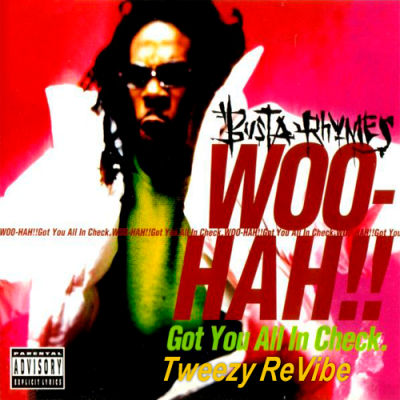 Busta Rhymes - Woo-Hah!! (Tweezy ReVibe)