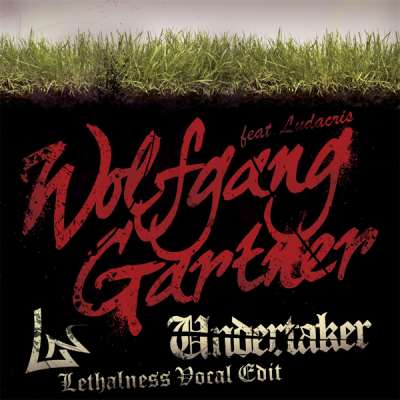 Wolfgang Gartner feat. Ludacris - Undertaker (Lethalness Vocal Edit)