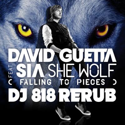 David Guetta feat. Sia - She Wolf (DJ 818 ReRub)