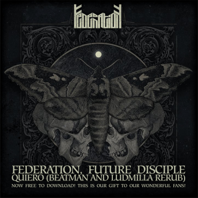 Federation, Future Disciple - Quiero (Beatman and Ludmilla ReRub)