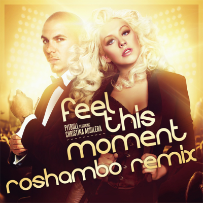 Pitbull Feel This Moment Christina