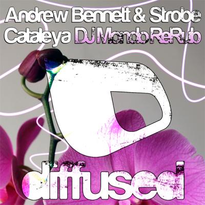 Andrew Bennett & Strobe - Cataleya (DJ Mondo ReRub)