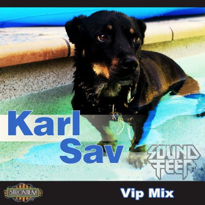 Karl Sav - Soundfeer (Vip Mix)