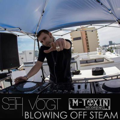 Seth Vogt - Blowing Off Steam