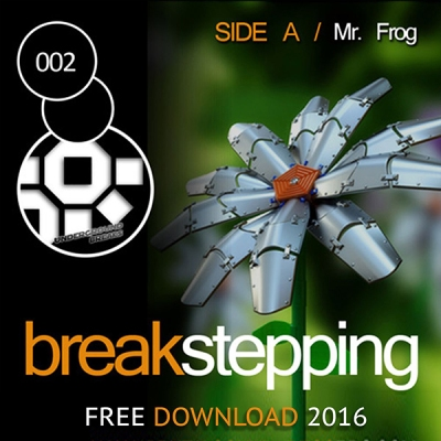 Mr Frog - Breakstepping