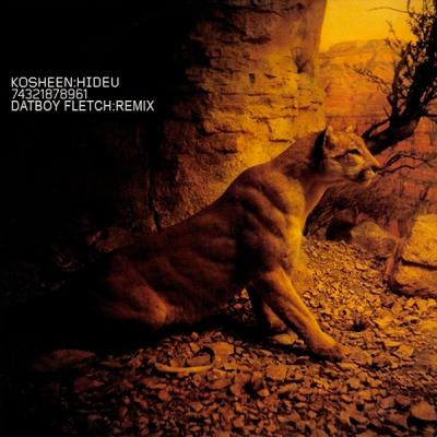 Kosheen - Hide U (Datboy Fletch Remix)