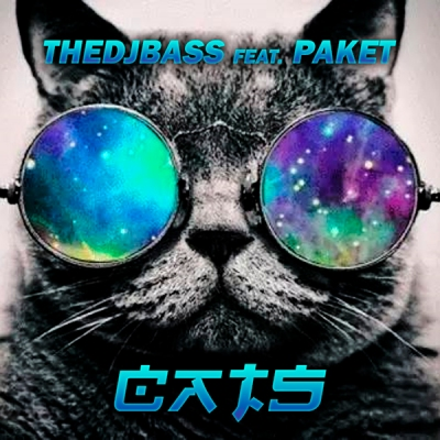 TheDJBass feat. Paket - Cats