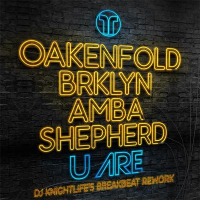 Paul Oakenfold, BRKLYN, Amba Shepherd - U Are (DJ Knightlife's Breakbeat Rework)