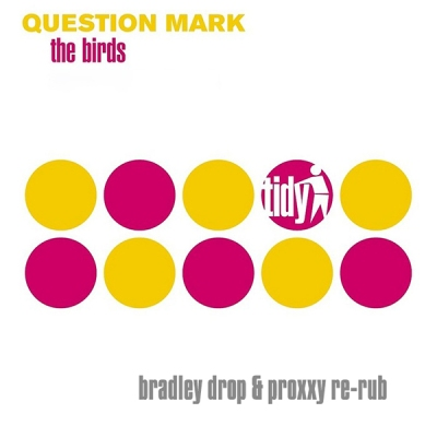 Question Mark - The Birds (Bradley Drop & Proxxy Re-Rub)
