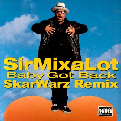 sir-mix-a-lot-baby-got-back-skarwarz-remix